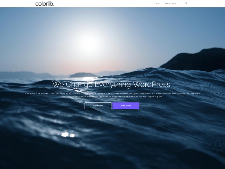 Screenshot van WordPress thema Shapely van Colorlib.