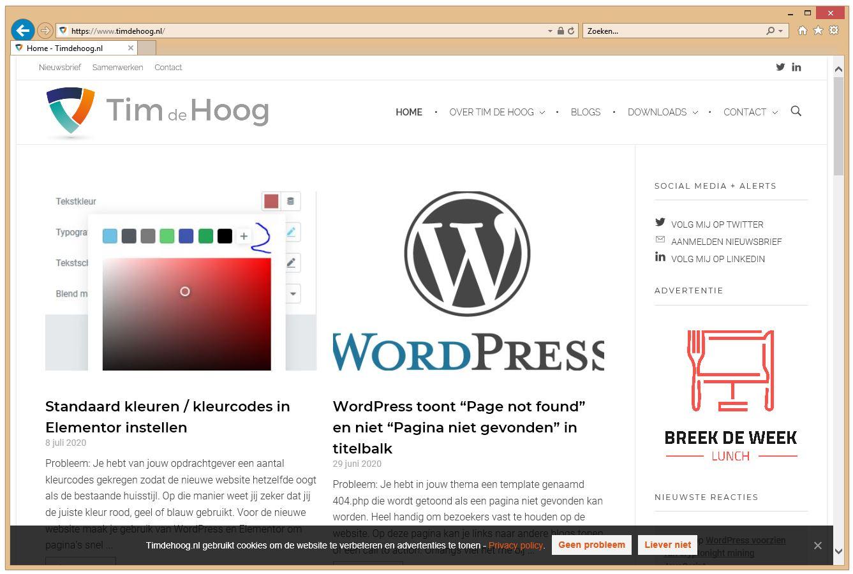 Screenshot van Timdehoog.nl in Internet Explorer 11.
