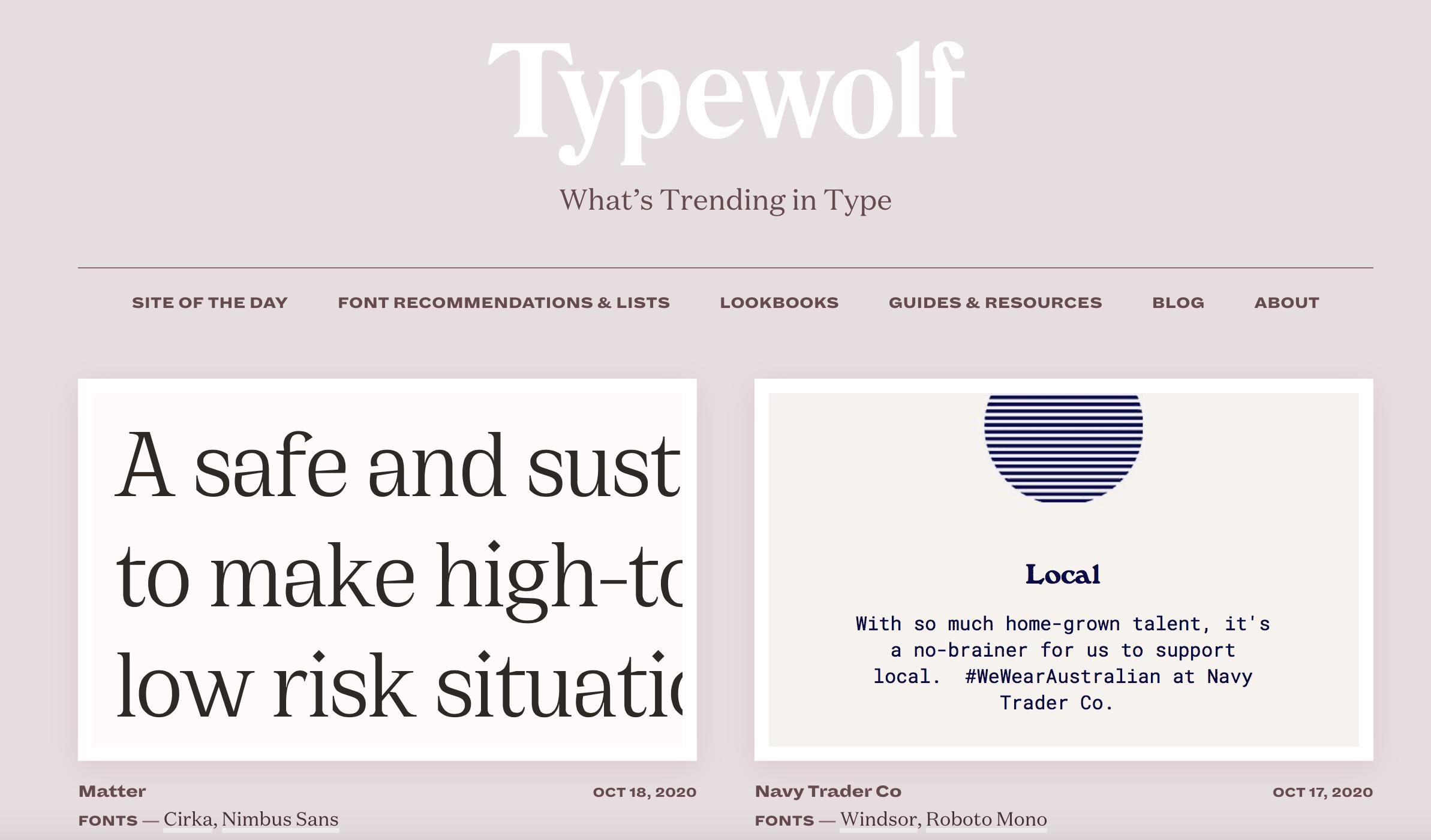 Screenschot van de Typewolf.com website met informatie over lettertypes.