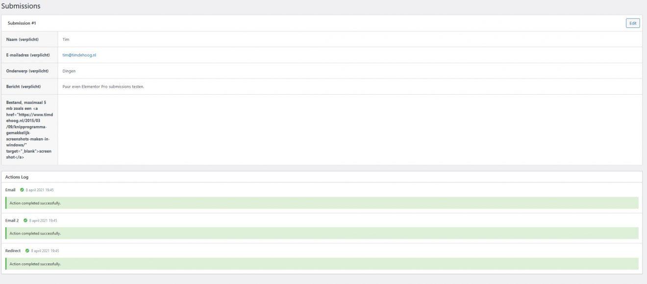 Detailweergave ingevuld formulier in Elementor Pro Form Widget.